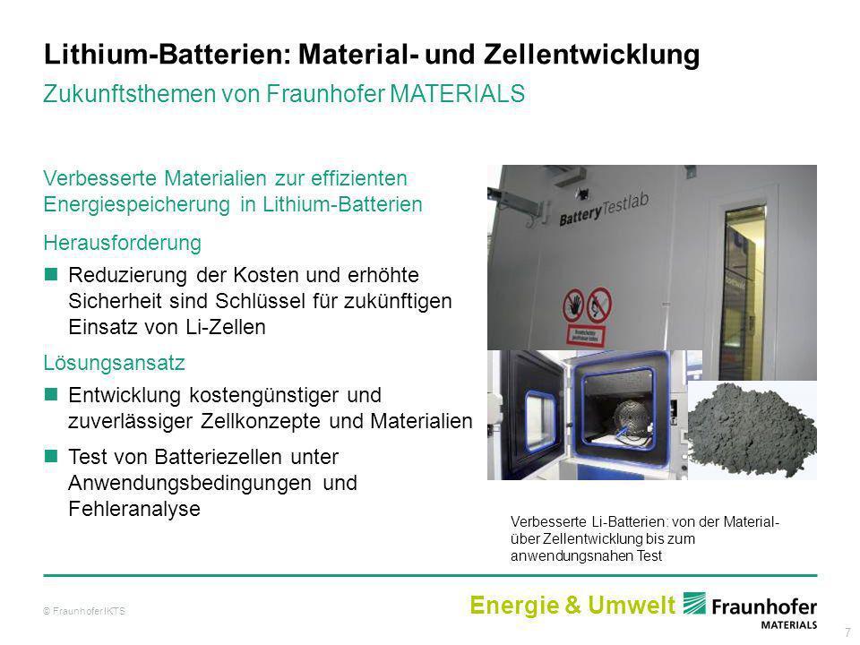 Lithium-Batterien: Material- und Zellentwicklung