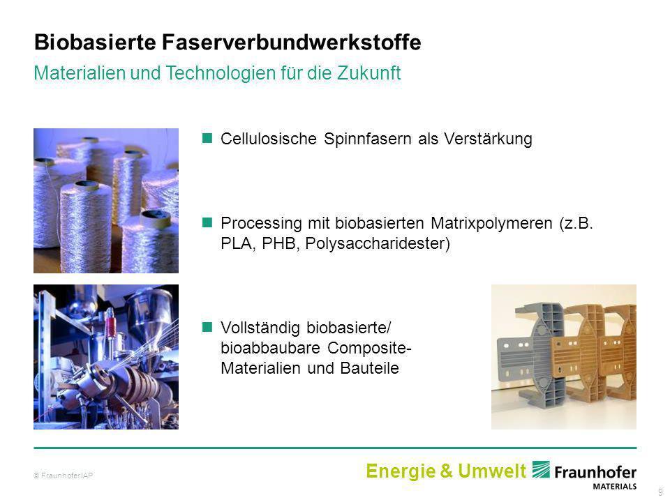 Biobasierte Faserverbundwerkstoffe