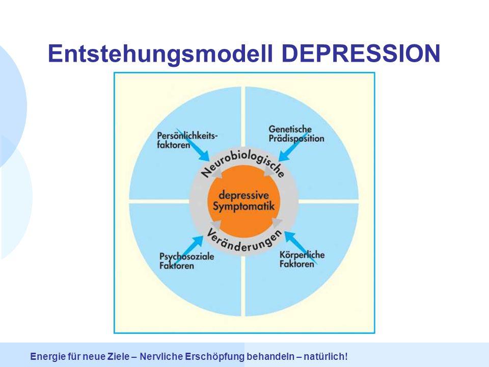 Entstehungsmodell DEPRESSION