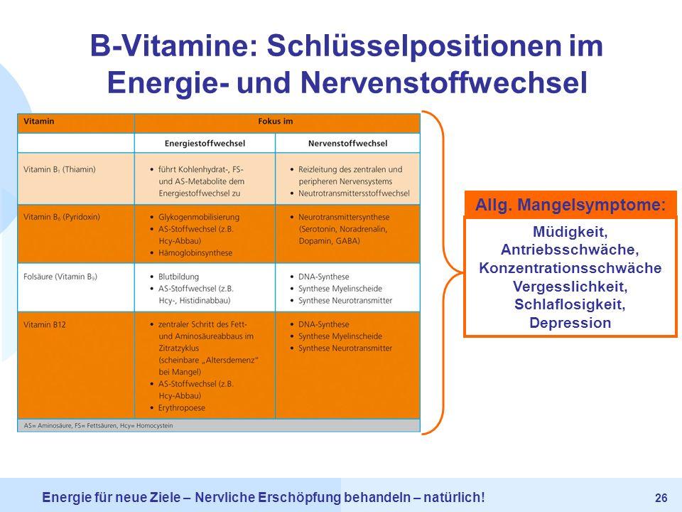 B-Vitamine: Schlüsselpositionen im Energie- und Nervenstoffwechsel