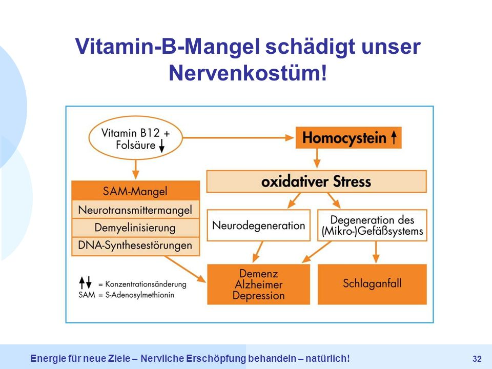 Vitamin-B-Mangel schädigt unser Nervenkostüm!
