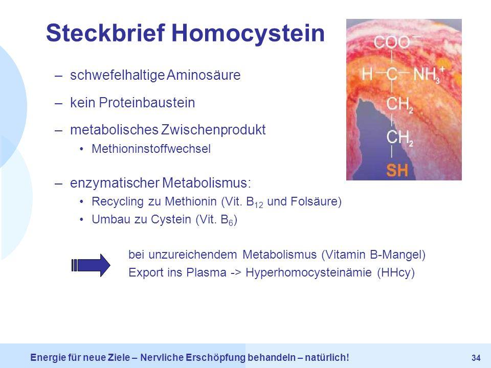 Steckbrief Homocystein