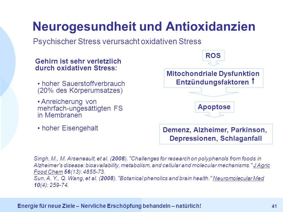 Neurogesundheit und Antioxidanzien