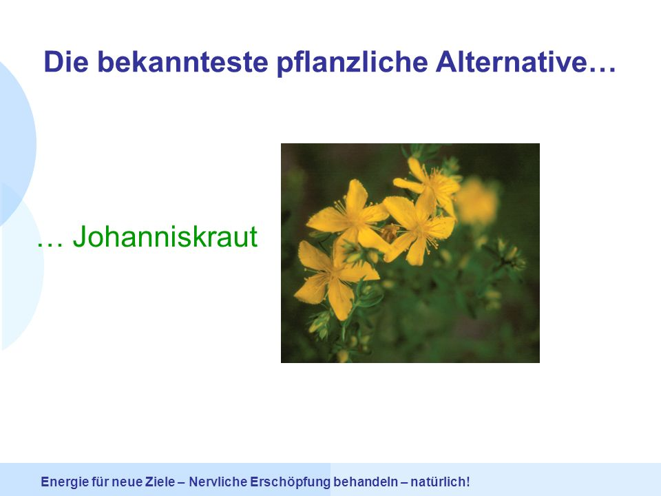 Die bekannteste pflanzliche Alternative…