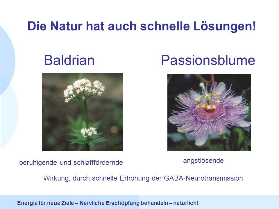 Die Natur hat auch schnelle Lösungen!