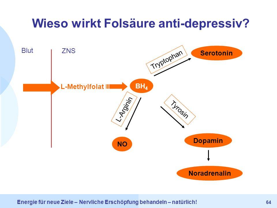 Wieso wirkt Folsäure anti-depressiv