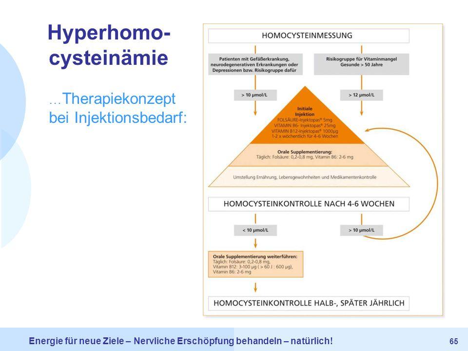Hyperhomo-cysteinämie