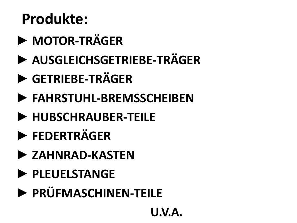 Produkte: ► MOTOR-TRÄGER ► AUSGLEICHSGETRIEBE-TRÄGER ► GETRIEBE-TRÄGER