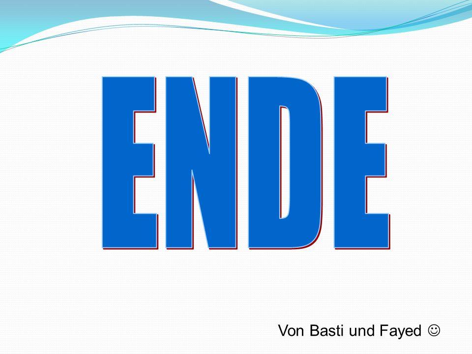 ENDE Von Basti und Fayed 