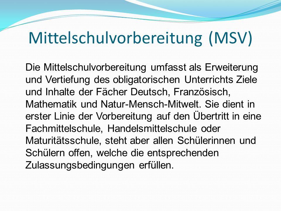Mittelschulvorbereitung (MSV)