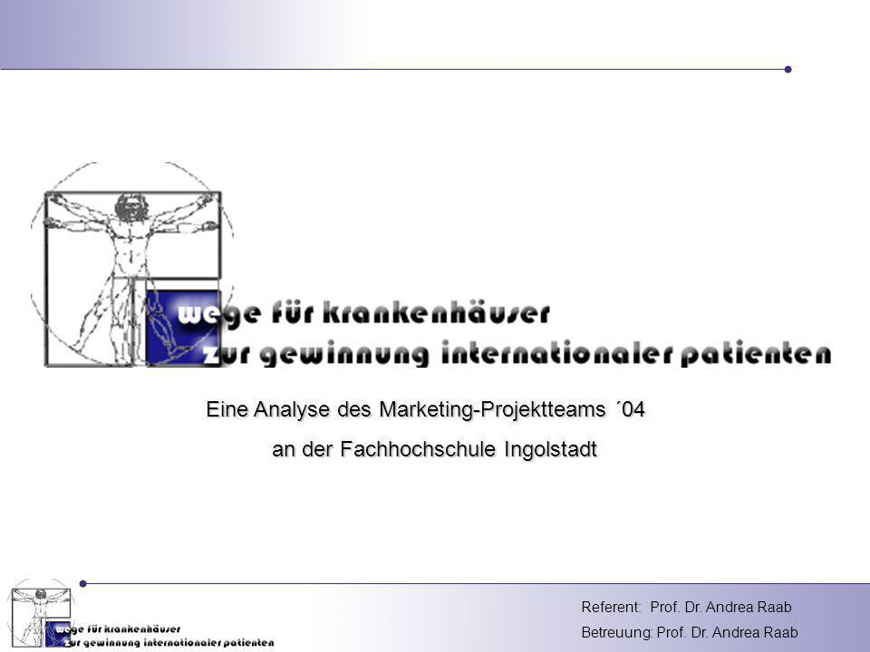 Eine Analyse des Marketing-Projektteams ´04