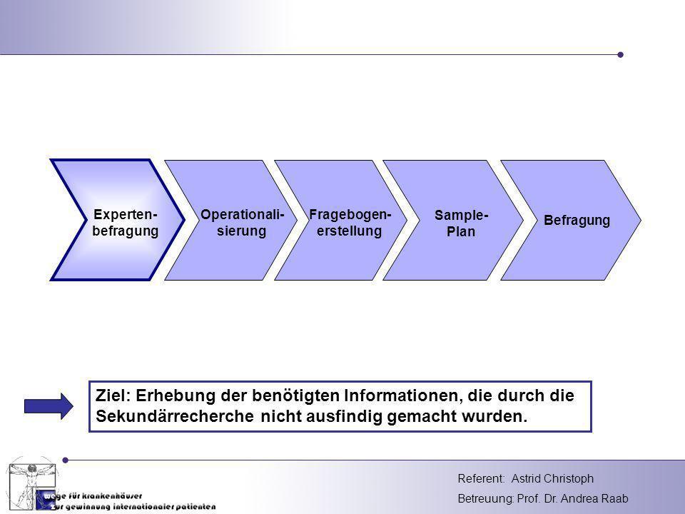 Experten- befragung. Operationali- sierung. Fragebogen- erstellung. Sample- Plan. Befragung.