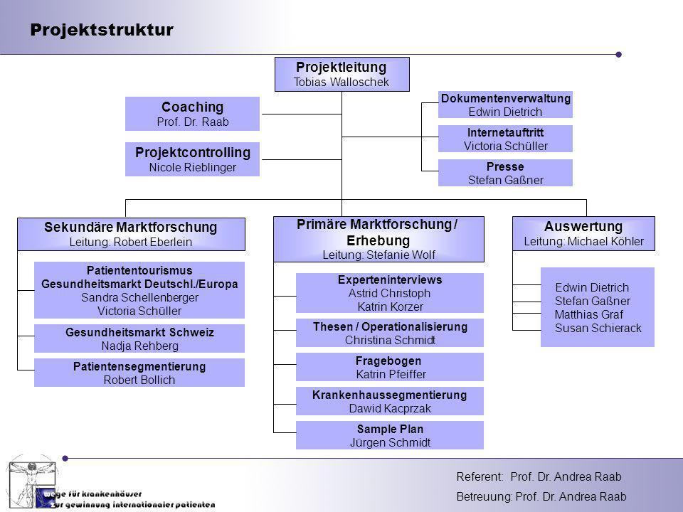Projektstruktur Projektleitung Coaching Projektcontrolling