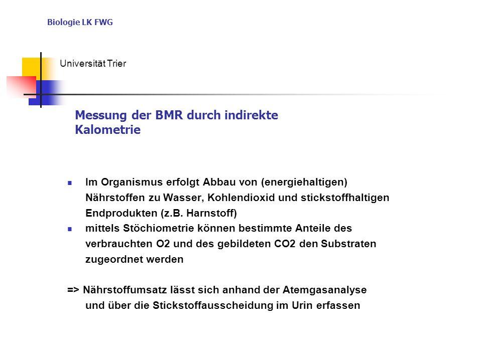 Messung der BMR durch indirekte Kalometrie