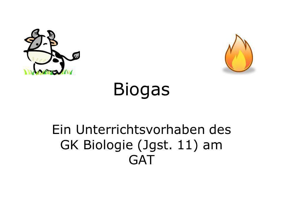 Ein Unterrichtsvorhaben des GK Biologie (Jgst. 11) am GAT
