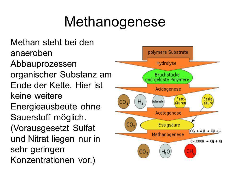 Methanogenese