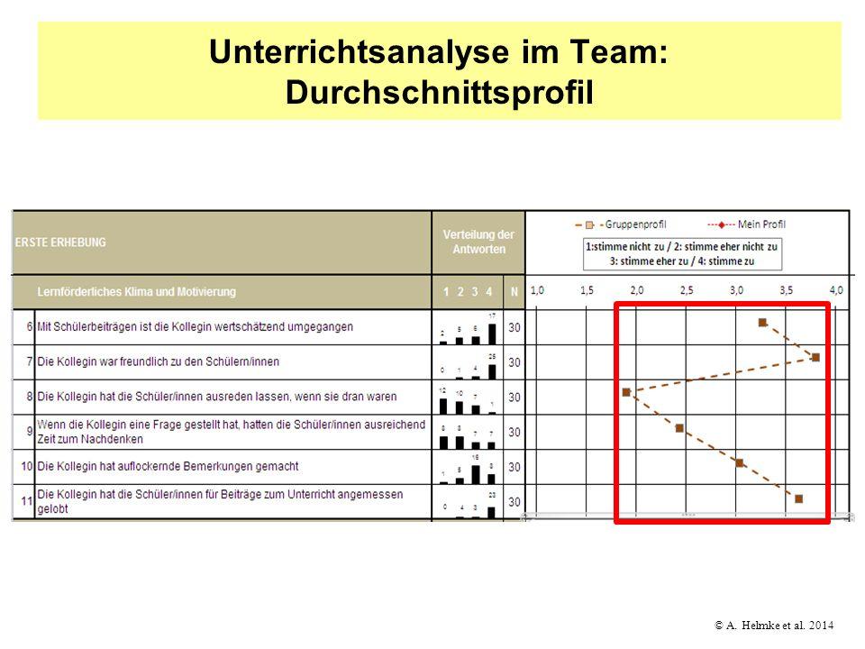 Unterrichtsanalyse im Team: Durchschnittsprofil