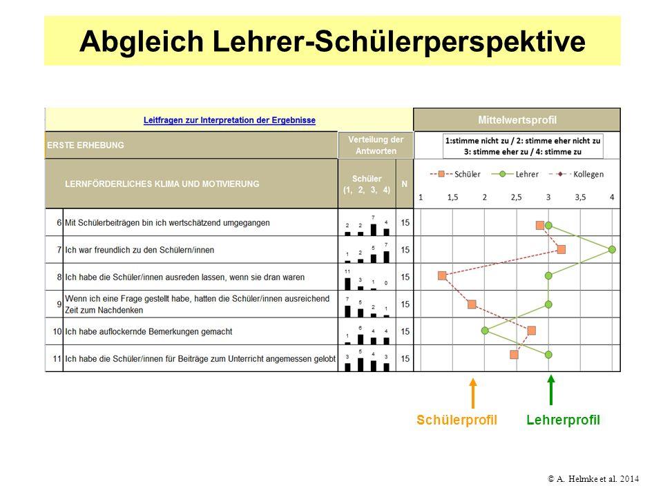 Abgleich Lehrer-Schülerperspektive