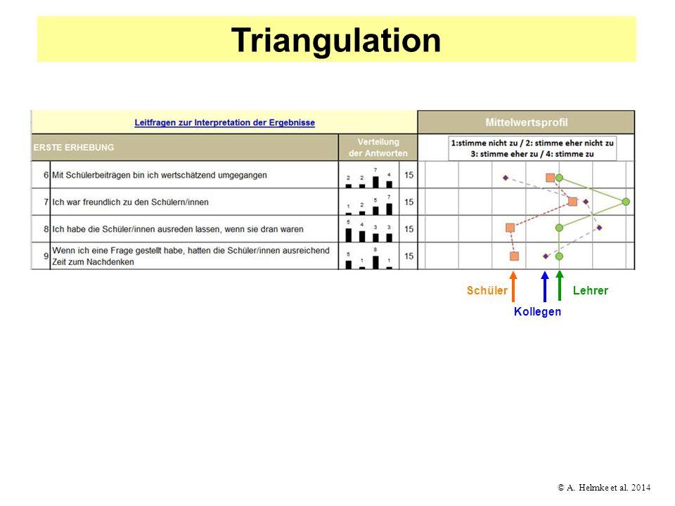 Triangulation Schüler Lehrer Kollegen