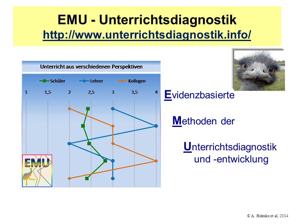 EMU - Unterrichtsdiagnostik http://www.unterrichtsdiagnostik.info/