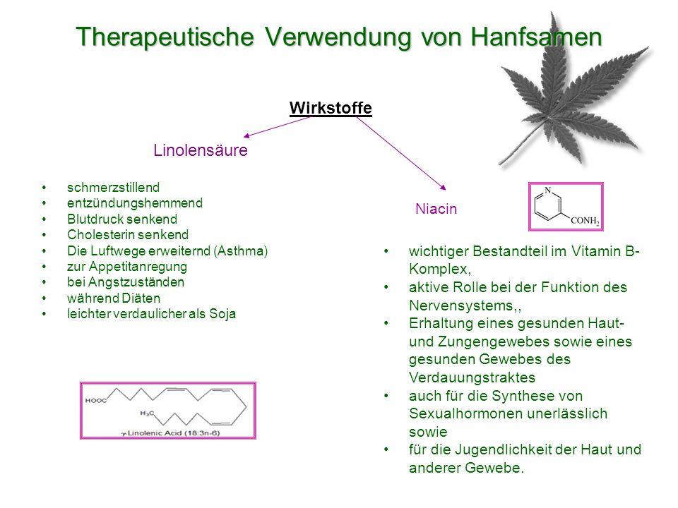 Therapeutische Verwendung von Hanfsamen