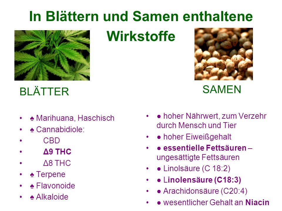 In Blättern und Samen enthaltene Wirkstoffe