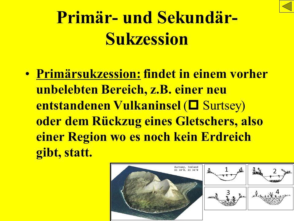 Primär- und Sekundär-Sukzession