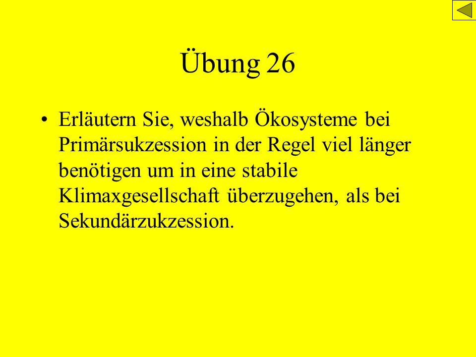 Übung 26