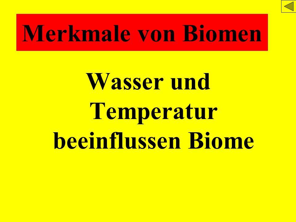 Wasser und Temperatur beeinflussen Biome