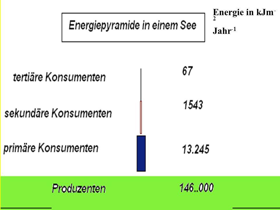 Energie in kJm-2 Jahr-1
