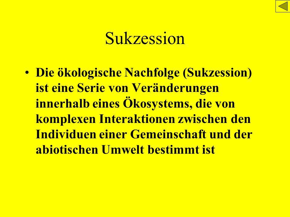 Sukzession