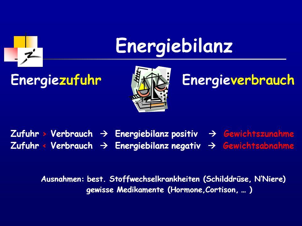 Energiebilanz Energiezufuhr Energieverbrauch