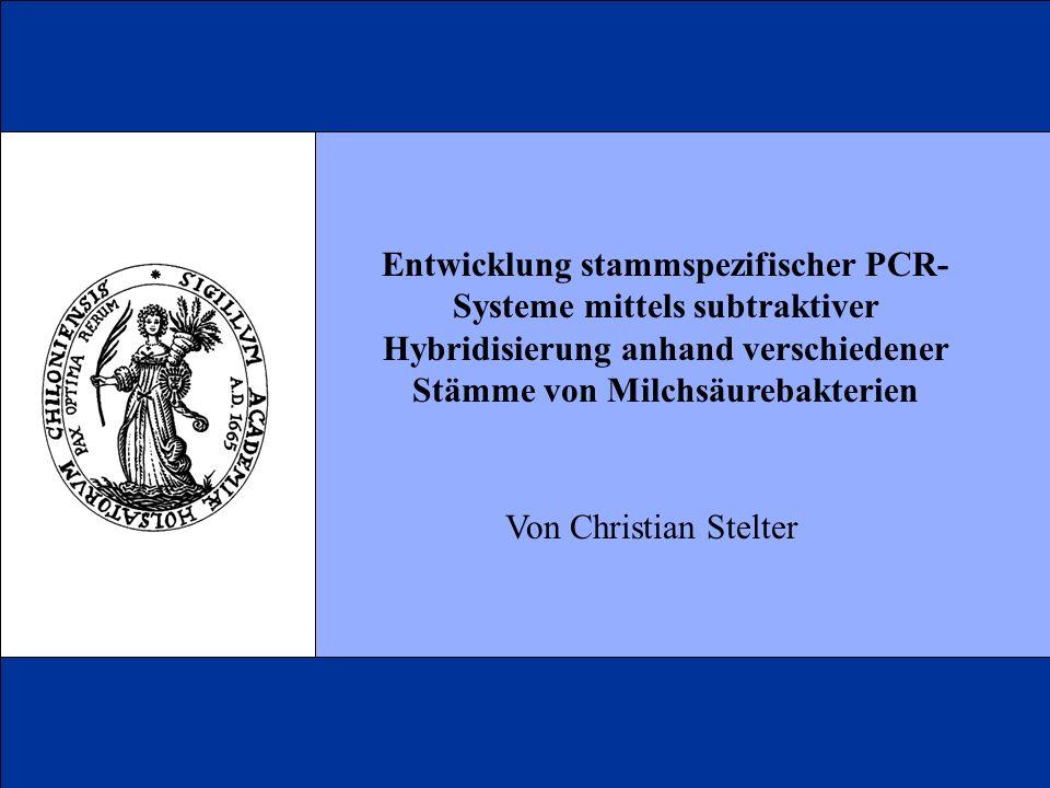 Entwicklung stammspezifischer PCR-Systeme mittels subtraktiver Hybridisierung anhand verschiedener Stämme von Milchsäurebakterien