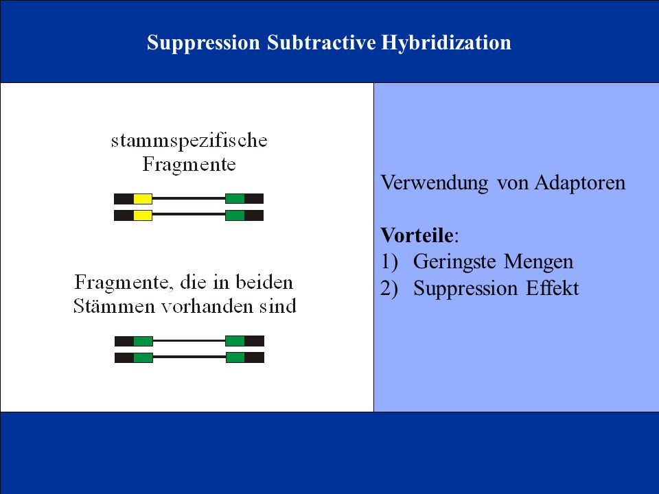 Suppression Subtractive Hybridization