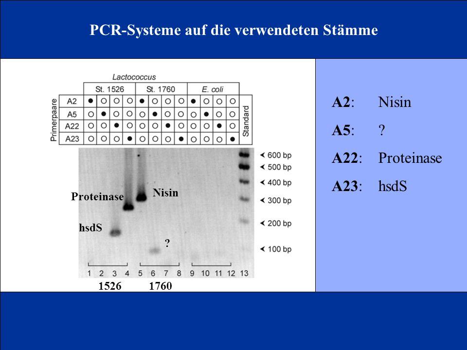 PCR-Systeme auf die verwendeten Stämme
