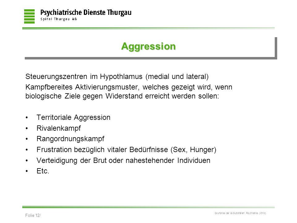 Aggression Steuerungszentren im Hypothlamus (medial und lateral)