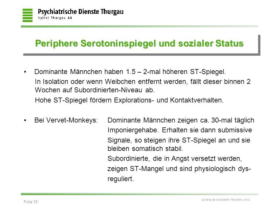 Periphere Serotoninspiegel und sozialer Status