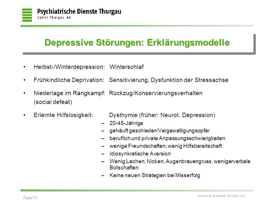 Depressive Störungen: Erklärungsmodelle