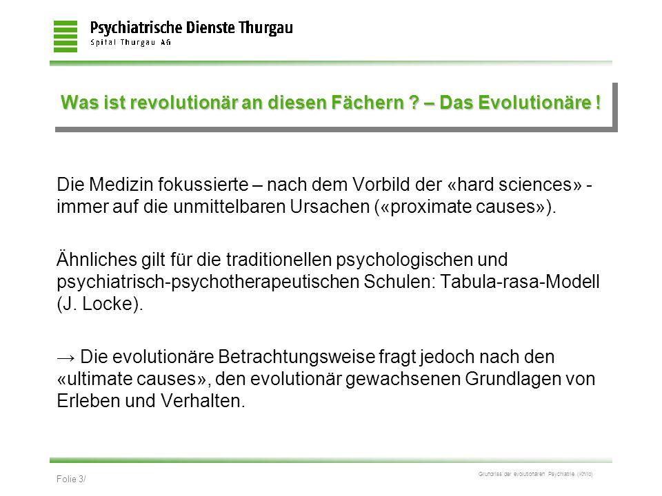 Was ist revolutionär an diesen Fächern – Das Evolutionäre !