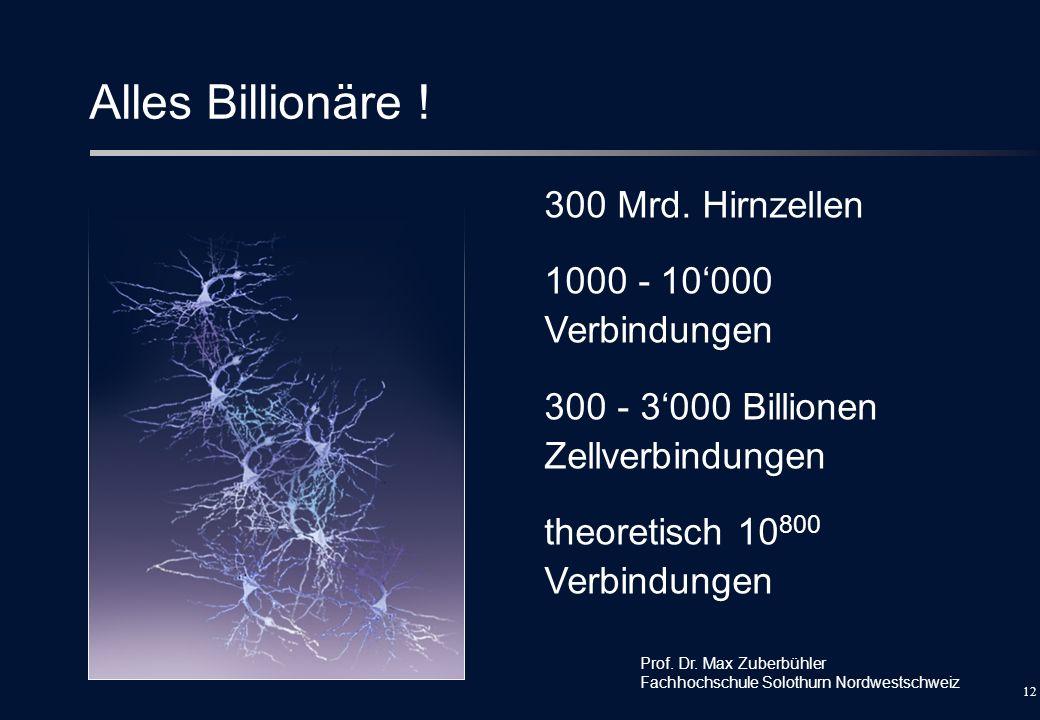 Alles Billionäre ! 300 Mrd. Hirnzellen 1000 - 10'000 Verbindungen