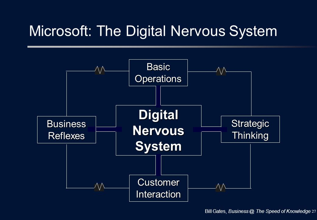 Microsoft: The Digital Nervous System