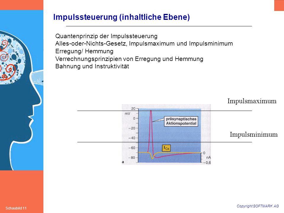 Impulssteuerung (inhaltliche Ebene)
