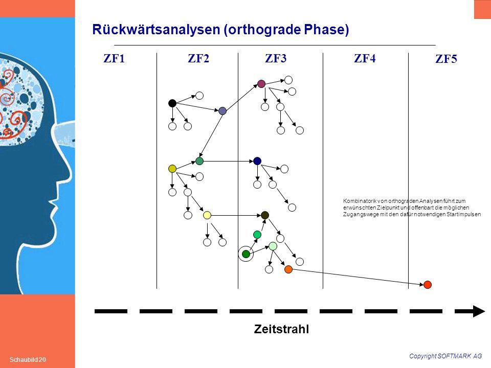 Rückwärtsanalysen (orthograde Phase)