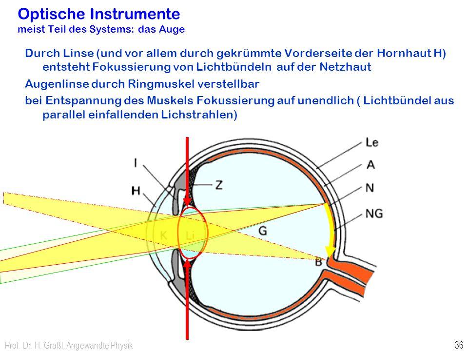Optische Instrumente meist Teil des Systems: das Auge