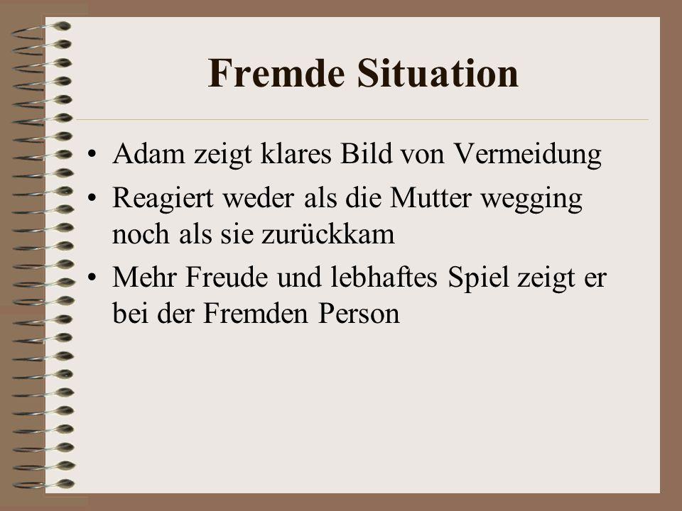 Fremde Situation Adam zeigt klares Bild von Vermeidung