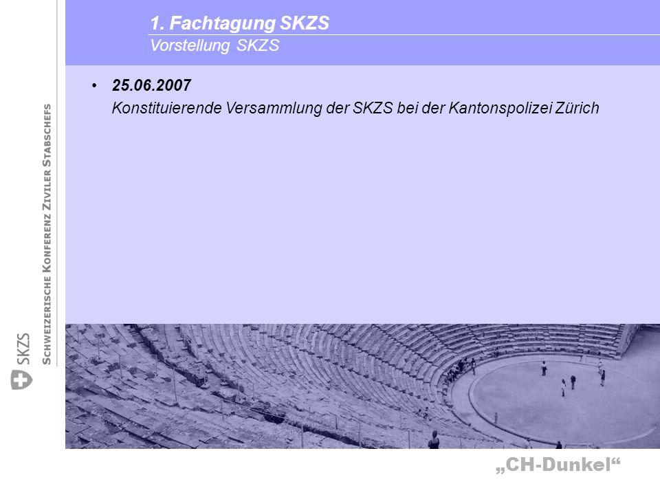 1. Fachtagung SKZS Vorstellung SKZS 25.06.2007