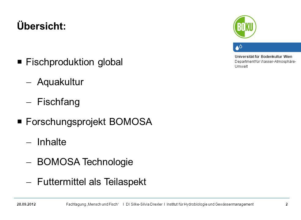 Übersicht: Fischproduktion global Aquakultur Fischfang