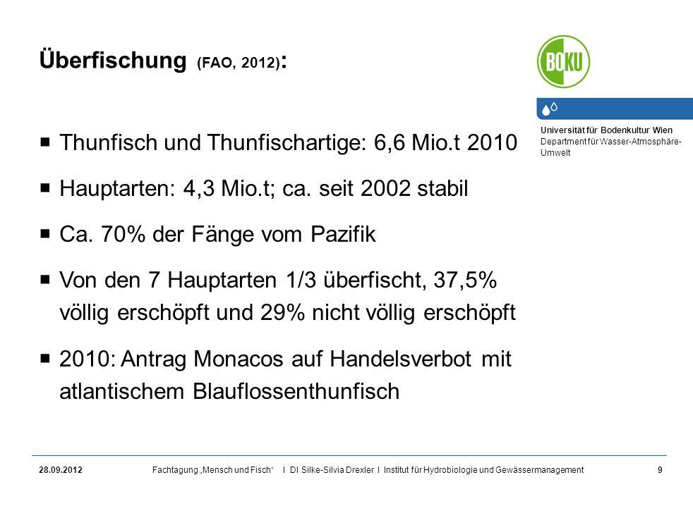Überfischung (FAO, 2012): Thunfisch und Thunfischartige: 6,6 Mio.t 2010. Hauptarten: 4,3 Mio.t; ca. seit 2002 stabil.