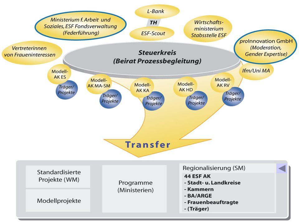 Regionalisierung (SM)