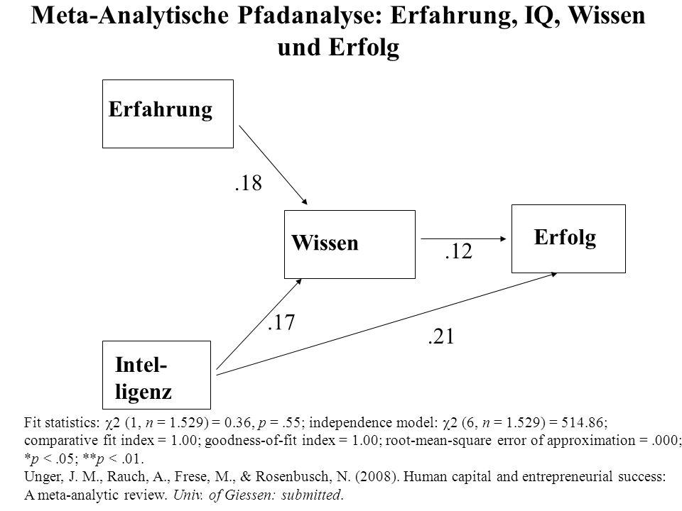 Meta-Analytische Pfadanalyse: Erfahrung, IQ, Wissen und Erfolg